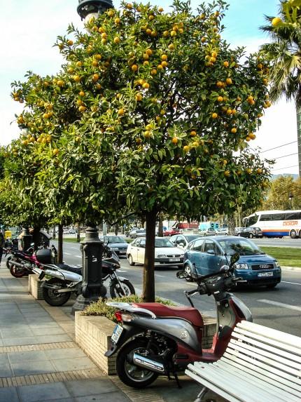 Barselona_Avinguda_Diagonal_Caddesi